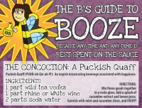 The B's Guide to Booze by Shelby Johnson